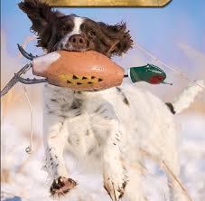 hund-dummy